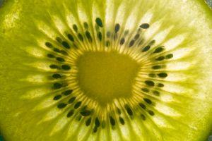 kiwi[1]