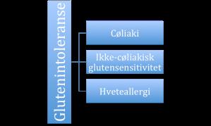 glutenintoleranse